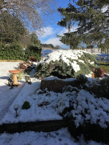 snow-june2019-2